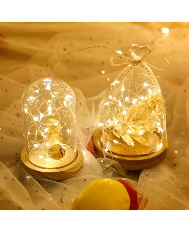 Copper LED Fairy Lights
